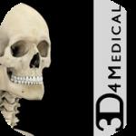 ボディマッピングにオススメ iPadアプリ『Skeleton System Pro III』