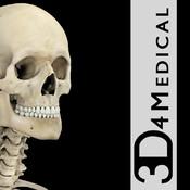 skeletonSystemPro3.fw